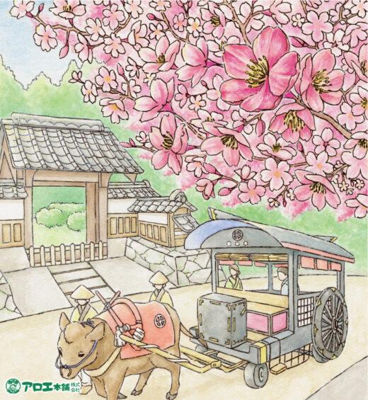 花結び3・4月号